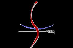 Logo COSEM